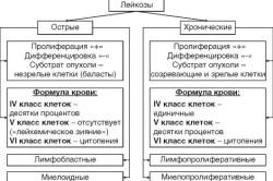 Классификация лейкозов по патогенезу