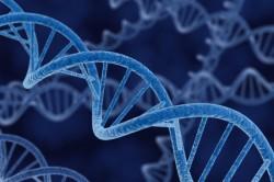 Наследование клеток рака